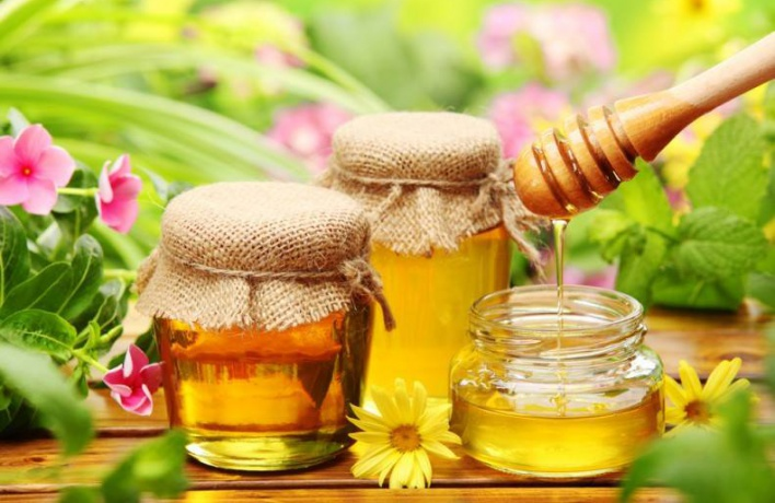 Отведать меда можно в Митрополичьем саду