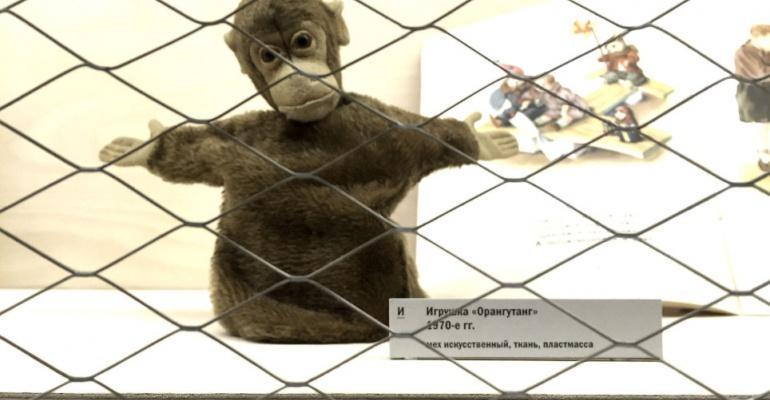 «Азбука музея»: 5 самых странных экспонатов