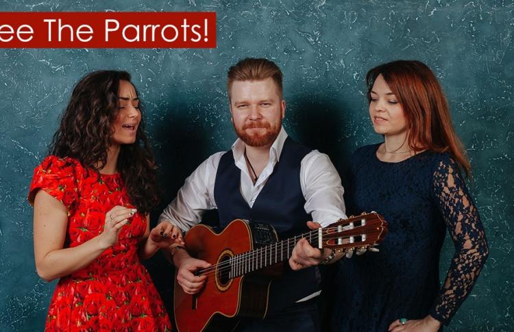 Концерт Free The Parrots