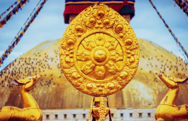 «Точка сборки: Непал-фест»