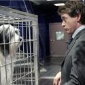 Фильмы про животных для семейного просмотра