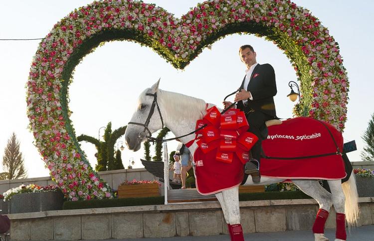 Путешествие принца на белом коне по стране продолжается