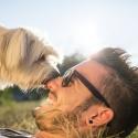 8 фактов о том, как вы относитесь  к животным, а они к вам