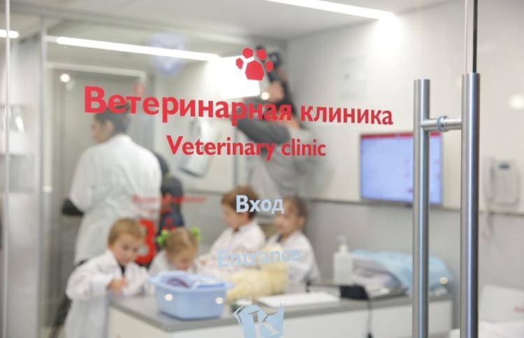 В Кидзании открылась ветеринарная клиника