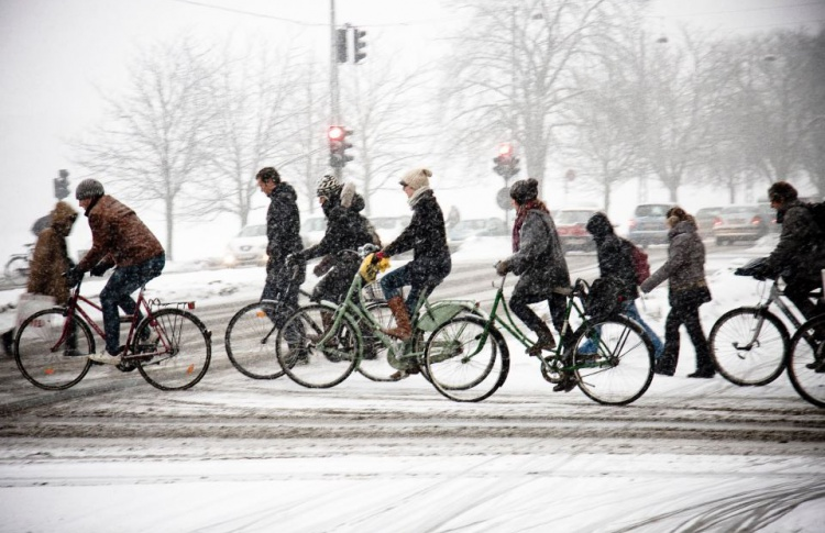 В Москве пройдет акция «На работу на велосипеде»