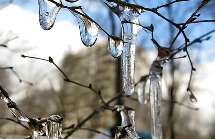 За 5 минут до весны: прогноз погоды в марте