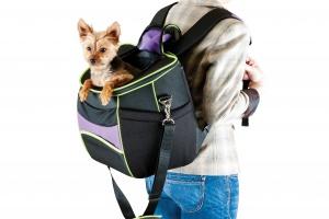 Как выбрать переноску для кошки и собаки