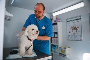 Royal Canin запускает в Москве и Санкт-Петербурге бесплатные ветмобили