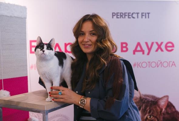 В Москве открылись занятия котойогой по программе, составленной котами - Фото №5