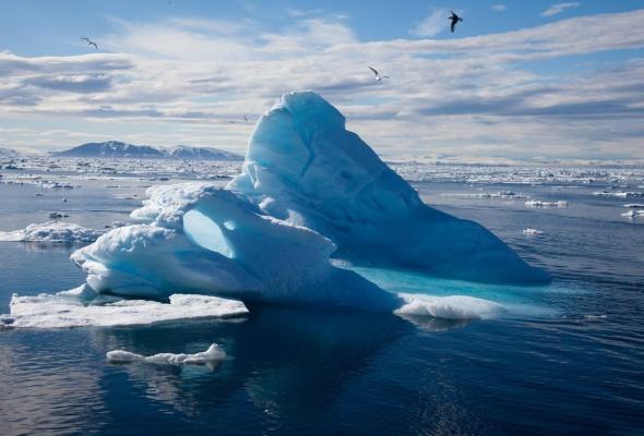 арктика - Фото №1