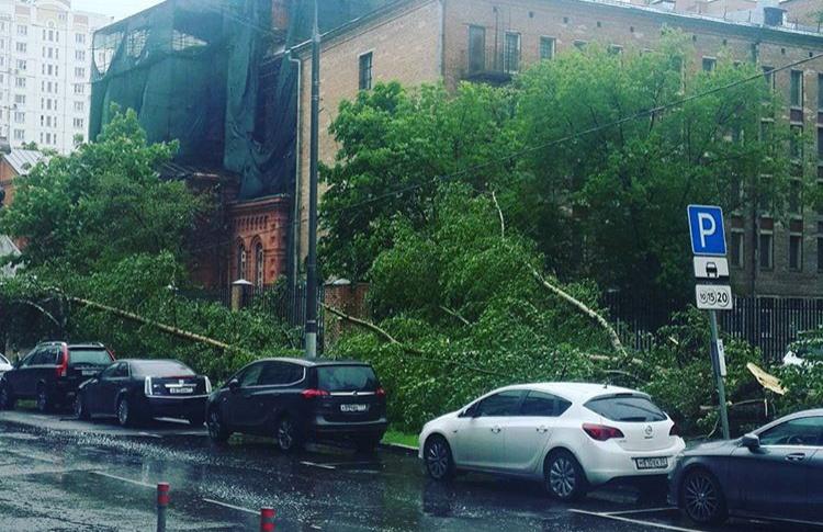 МЧС предупредило о новом урагане в Москве