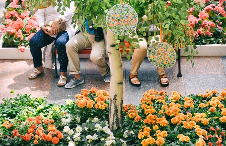 В июле в Москве откроются цветочные рынки и мастерские по приготовлению сладостей