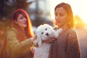 Девушка встретила своего пса, с которым не виделась 11 лет