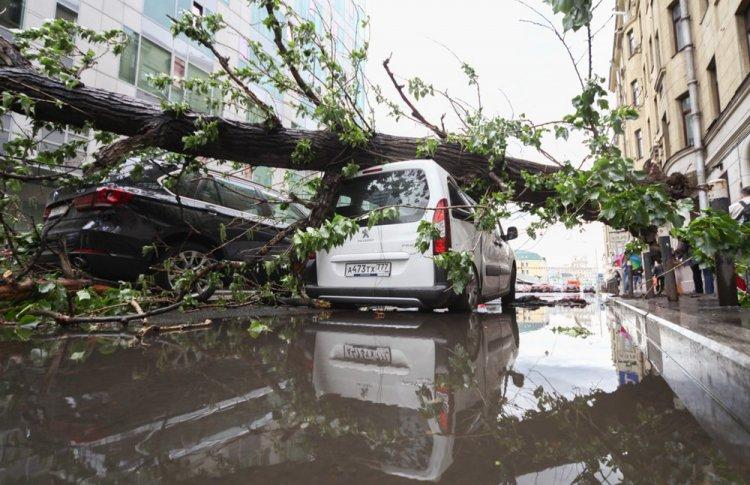 В Москве объявлен «желтый» уровень опасности из-за ураганного ветра