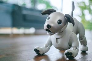 Sony представила нового робопса Aibo