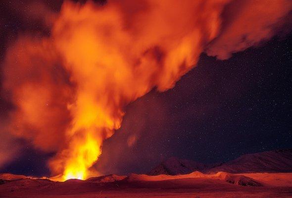 В конце ноября появится природная википедия - Фото №2