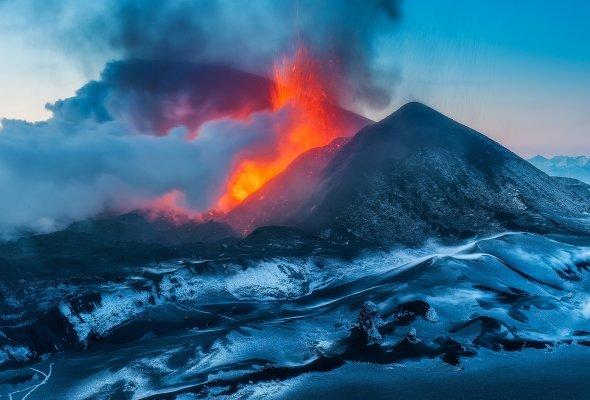 В конце ноября появится природная википедия - Фото №0