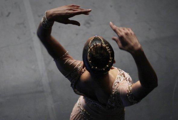 история балерины - Фото №2