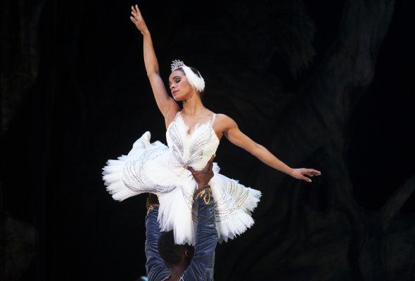 история балерины - Фото №0