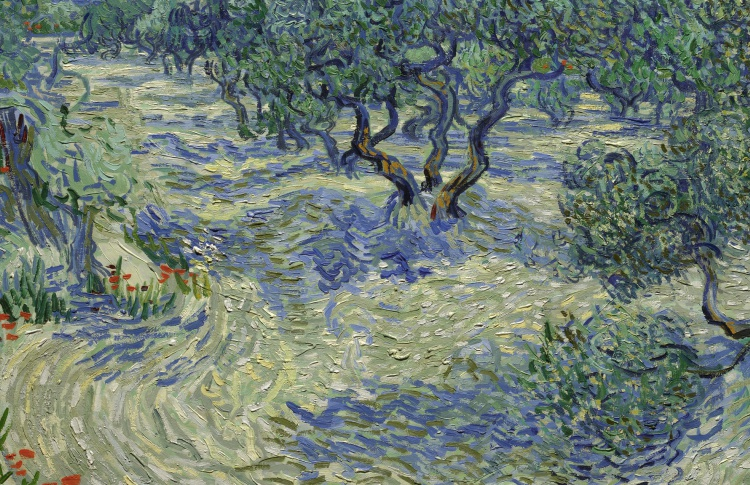 В картине Ван Гога нашли застрявшего 128 лет назад кузнечика