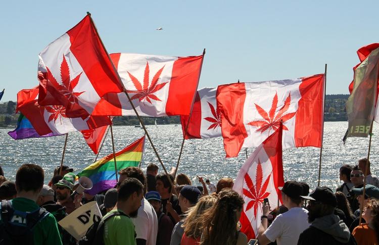 Нижняя палата канадского парламента приняла закон о легализации марихуаны