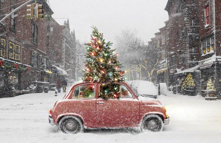 В Петербурге пройдет зимний фестиваль «Сейчастье»