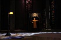 Спектакль «Лев, колдунья и платяной шкаф»