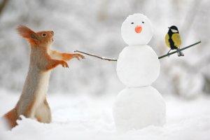 Февраль, март и апрель в Петербурге будут теплее обычного