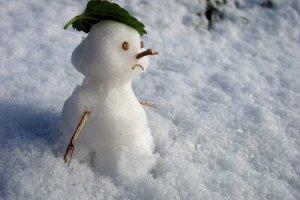В выходные в Петербурге и Ленинградской области ожидается не самая лучшая погода
