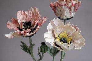 Выставка Анны Волковой «Хрупкое цветение»