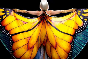 Редкая бабочка