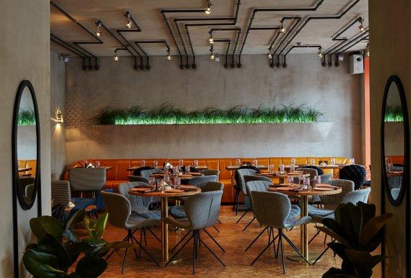 Ресторан «Белка» - Фото №0