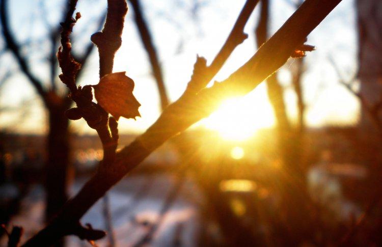 На земле наступила астрономическая весна
