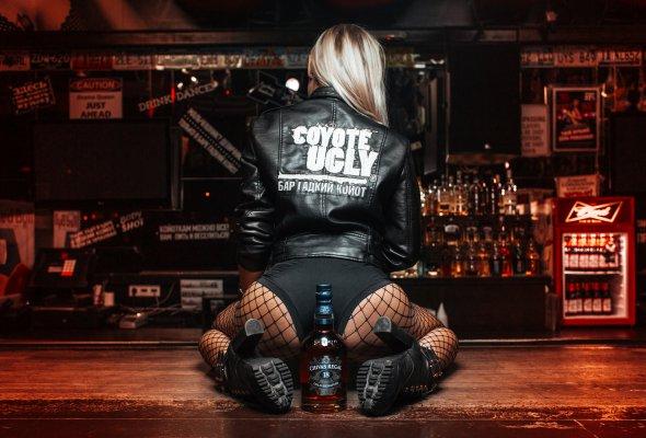 Легендарный американский бар «Гадкий Койот» - Фото №1