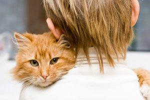 В Москве пройдет первый фестиваль домашних животных