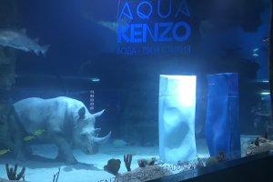 Kenzo Parfums и первый носорог под водой