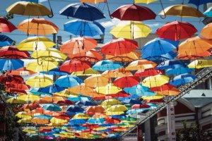 «Аллея парящих зонтиков» запустила краудфандинговый проект