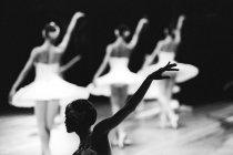 Выставка «Большой балет»
