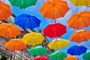 «Аллея парящих зонтиков вернулась в Петербург