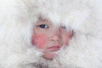 Арктика: круги жизни. Крайний Север Брайана Александера