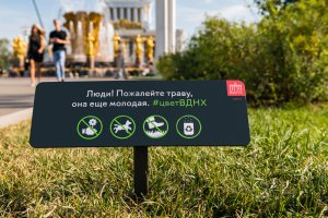 ВДНХ избавляет москвичей от страха тротуаров