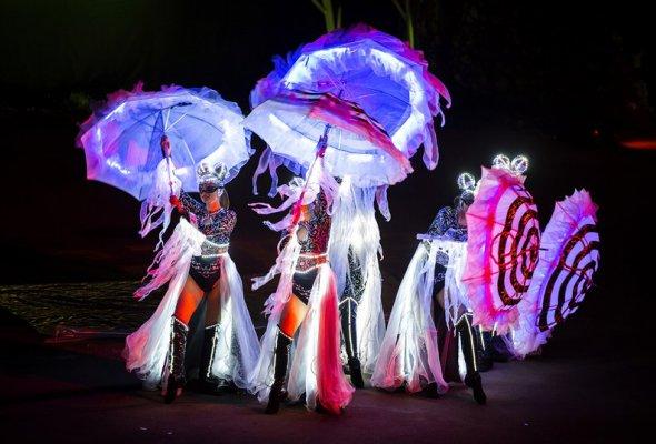 Вселенский карнавал огня 2018 - Фото №4