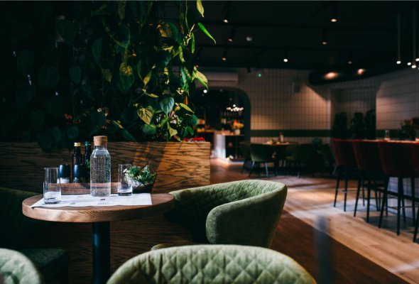 Ресторан «Зеленый сад» - Фото №0