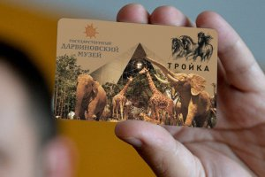 В «Тройку» запрягли слонов и жирафов