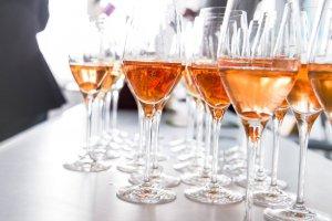 10 лучших винных школ Москвы