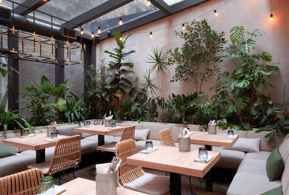 Ресторан Jungle - Фото №0