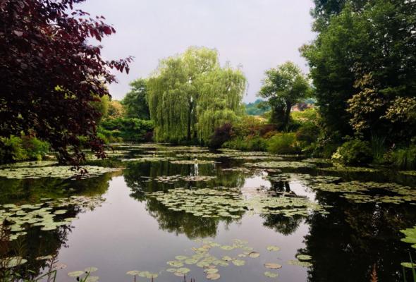 Клод Моне: Магия воды и света - Фото №4