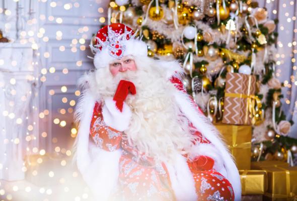 Новогоднее мегашоу «Главный секрет Деда Мороза» в Крокусе - Фото №0