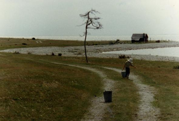 Жертвоприношение 1986 - Фото №7