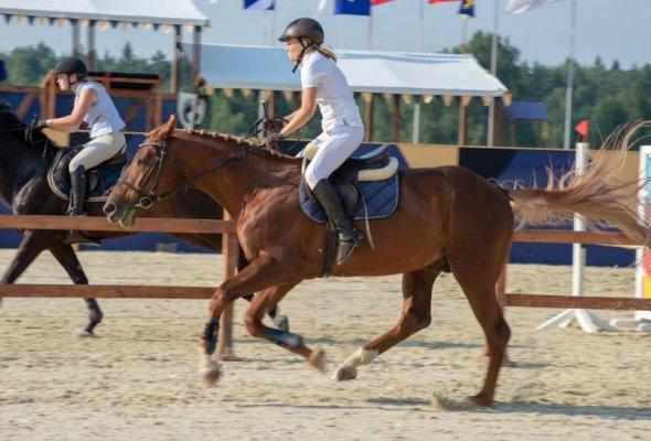 Конный фестиваль «Иваново поле» - Фото №1